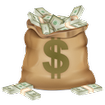 کسب درآمد تضمینی دلاری و ریالی
