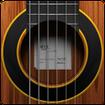 ساز گیتار (بدون مهارت بنوازید)