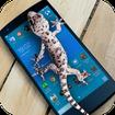 Lizard  on phone  prank