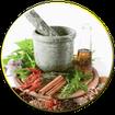 طب سنتی داروخانه گیاهی