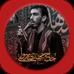 Praise and lament of Mehdi Rasouli