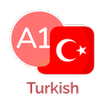 Turkish for beginners. Learn Turkish fast, free.
