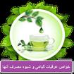 Properties of herbal extracts