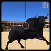 Angry Bull Attack Shooting