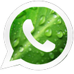 والپیپر واتساپ whatsapp wallpaper