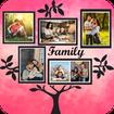 Photo frame, Tree frame