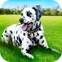 Dalmatian Dog Pet Life Sim 3D