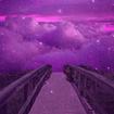 Purple Wallpaper 💜