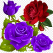 Flowers and Roses Live Wallpaper Gif App