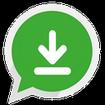 WhatsApp Professional Downloader