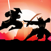 Shadow Warrior Ultimate Fighting
