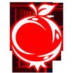 سیب و انار  سفارش میوه وسبزی دریزد