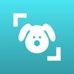 Dog Scanner: Breed Recognition