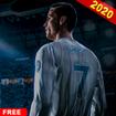 Soccer Champion Football Kick