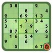 Great Sudoku: Logic puzzle