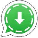 ذخیره استوری واتساپ