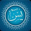 Surah Yasin Pro - 7 Qura Audio & Meanings
