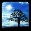 Blue Sky Free Live Wallpaper