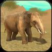 Wild Elephant Sim 3D