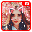 Picture editor - Sticker on photo & Heart Crown