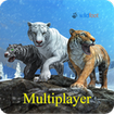 Tiger Multiplayer - Siberia