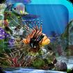 3D Aquarium Live Wallpaper HD