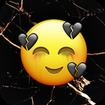 emoji wallpaper photo editor