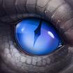Dragon Lords