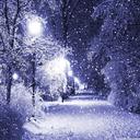 پس زمینه بارش برف