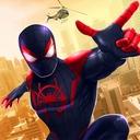 Black Spider Rope Hero - Strange Gangster Vegas