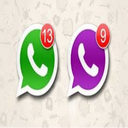 whats app 2