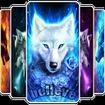 wolf (wolf of walletreet)