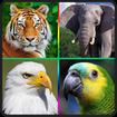 صدای پرندگان و حیوانات