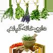 داروخانه گیاهی