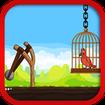 Birdsgame