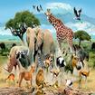 صدای همه حیوانات(ویژه کودکان)