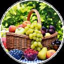 آموزش انگلیسی میوه و سبزیجات