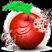 110 نوای حسینی ( رینگتون محرم )