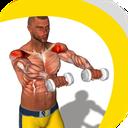 تمرینات بدن سازی برای بازوها
