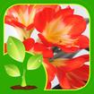 آموزش باغبانی وپرورش گل وگیاه(فیلم)