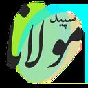 سپید مولانا - مولوی