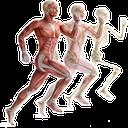 دانستنیهای بدن انسان