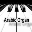 ارگ عربی