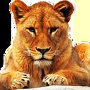 آموزش سه زبانه اسم و صدای حیوانات