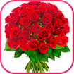 Roses Stickers WAStickerApps