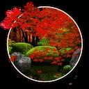 Zen Garden -Fall-
