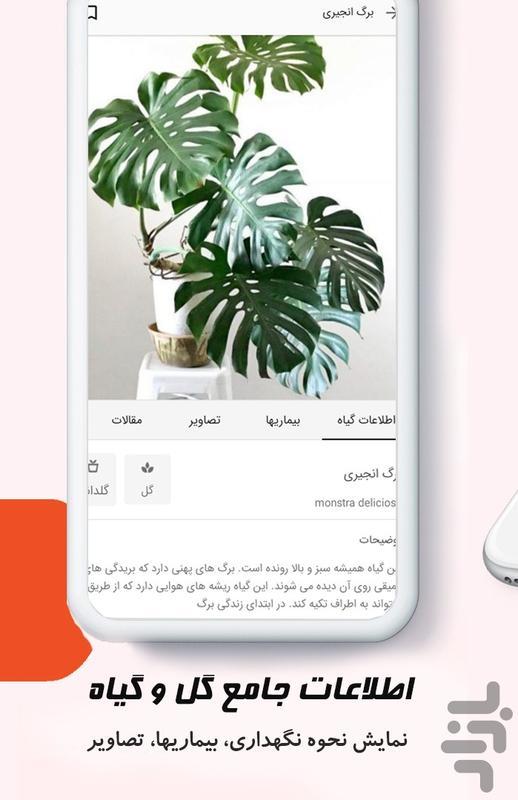 کافه گلبرگ شبکه دوستداران گل و گیاه - عکس برنامه موبایلی اندروید