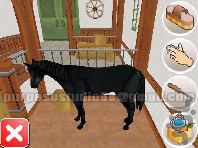 اسب سوار حرفه ای 3 - عکس بازی موبایلی اندروید