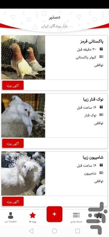 آگهی خرید و فروش حیوانات دستپر پت - عکس برنامه موبایلی اندروید
