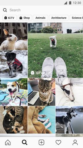 Instagram - Image screenshot of android app